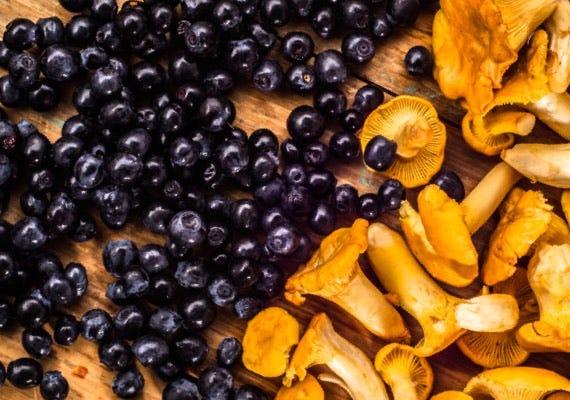 Bär, frukt & svamp